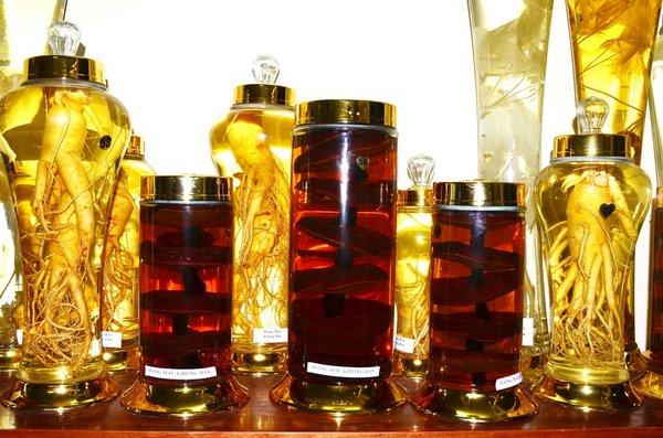 bình ngâm rượu nấm linh chi tại q12 1